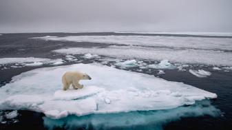 Ochrana klimatu